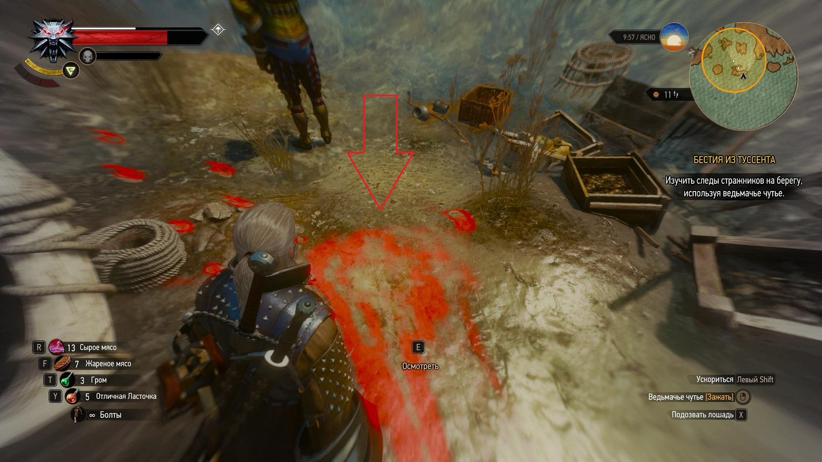 Ведьмак 3 Кровь и вино Задание Бестия из Туссента