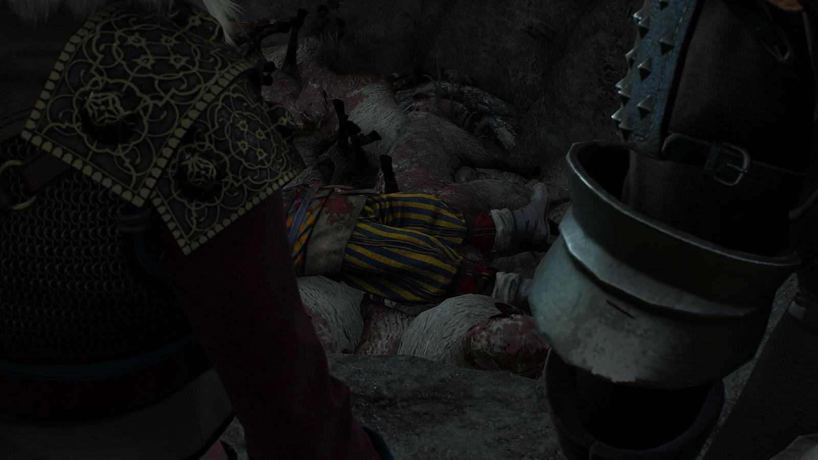 Ведьмак 3 Дикая охота Задание Могила Скьялля