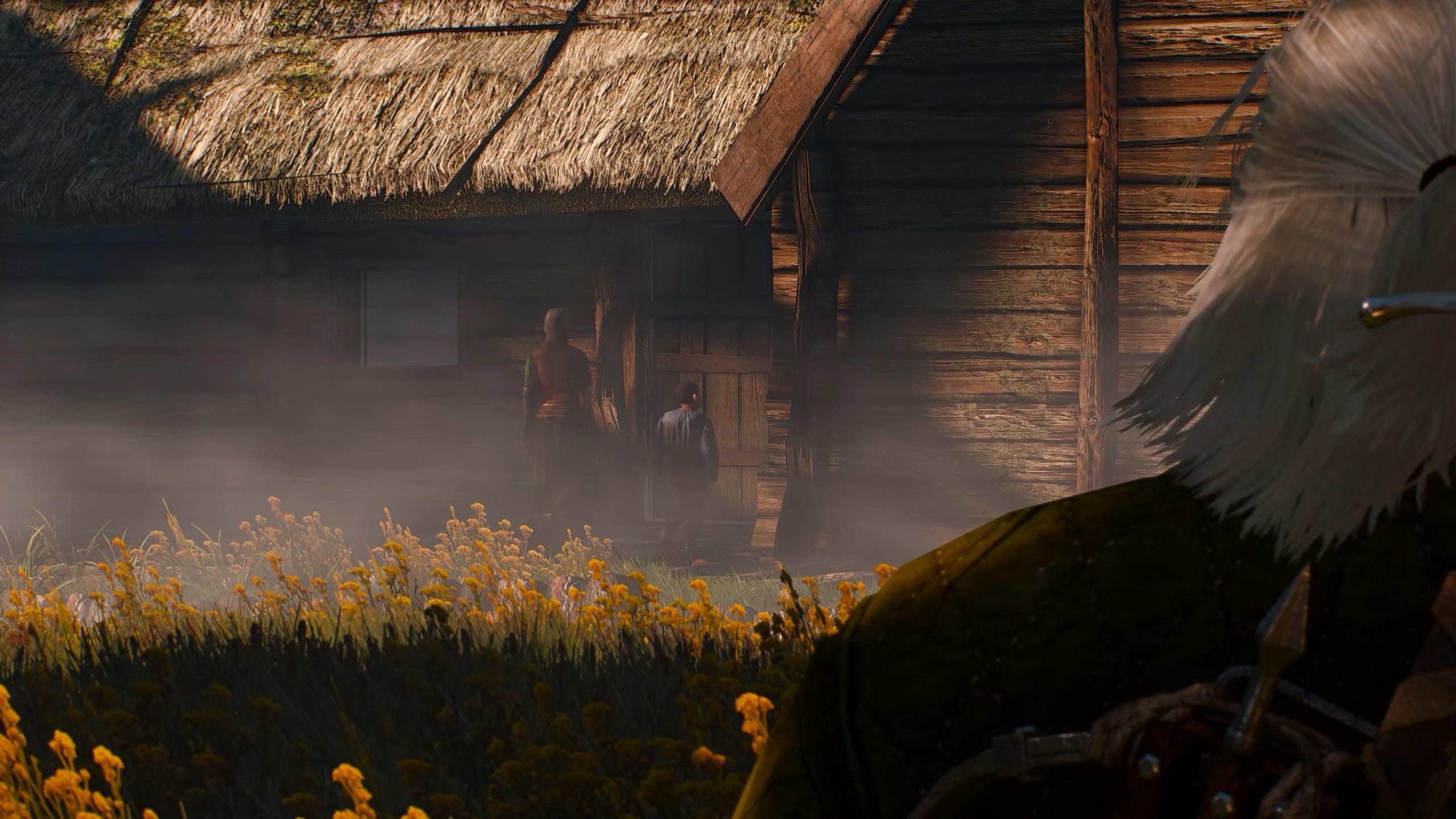 Ведьмак 3 Дикая охота Задание Хозяйки леса